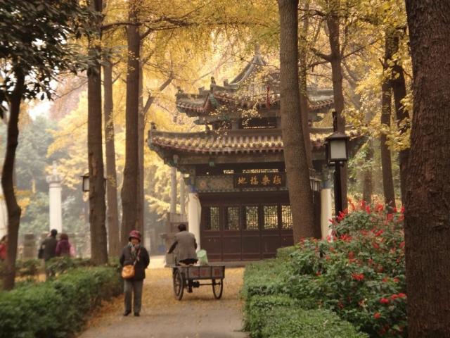Temple Wenshu.