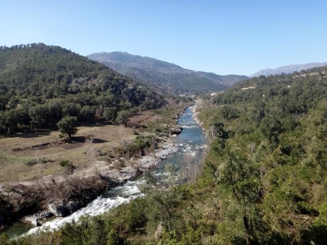 paysage sur la ligne de train Bastia Calvi