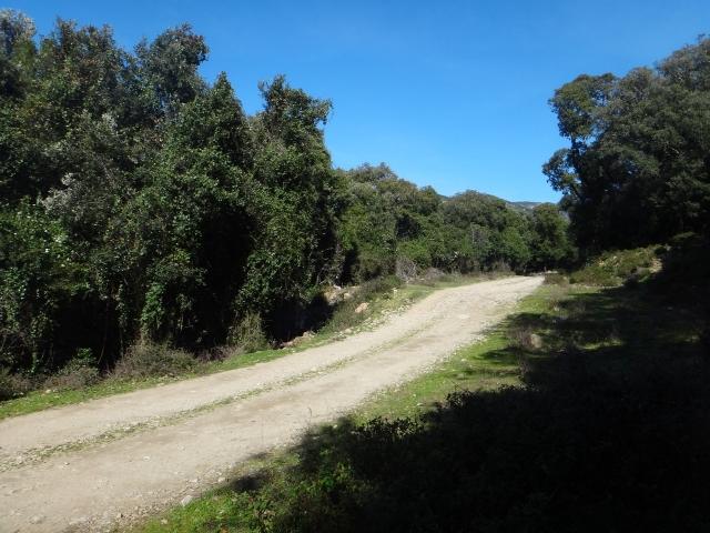 piste vers Cargèse