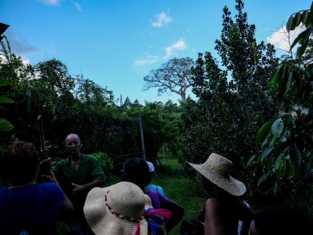 Dans la plantation avec Didier
