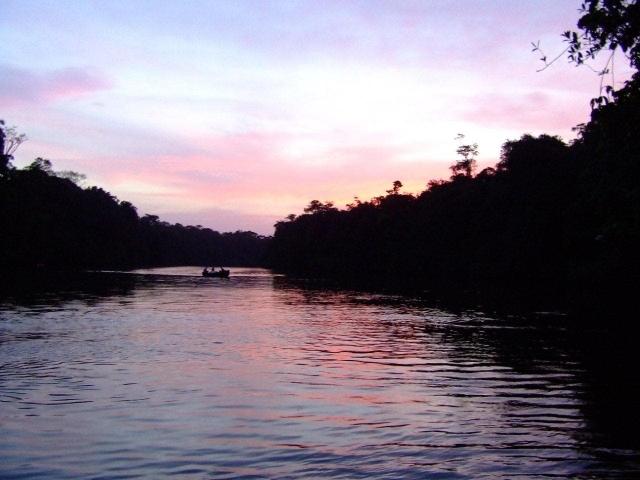 Le fleuve Kourou
