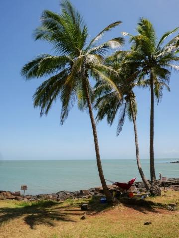 hamac entre deux cocotiers