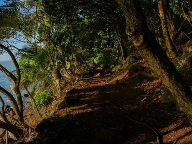 sentier sur l'île royale
