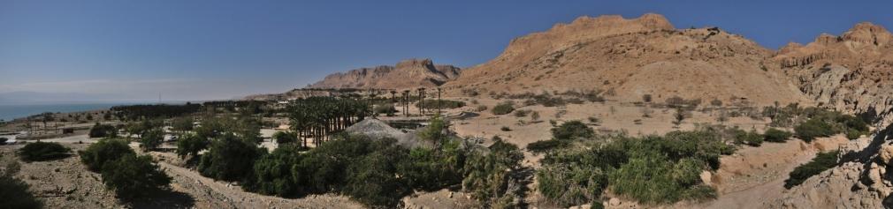 reserve d'Ein Gedi