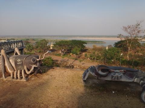 Vue sur le Mékong entre crabe et criquet.