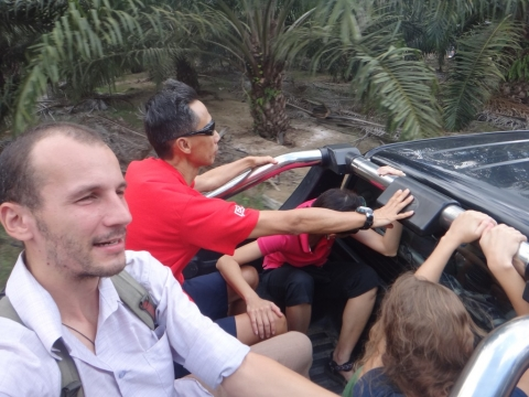 En voiture pour la récolte de durian !