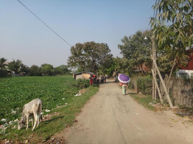 Aux alentours de Mandalay