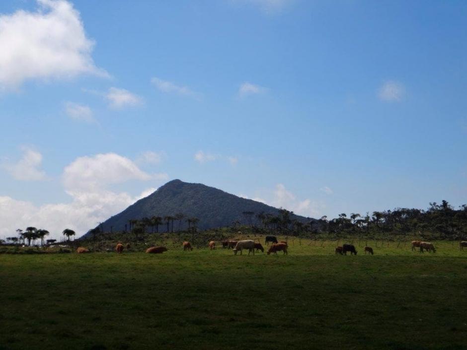 Les plaines de Bourg Murat