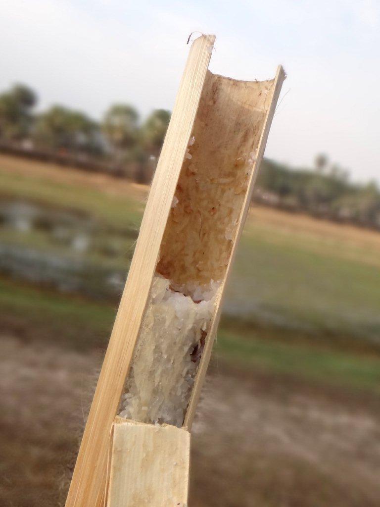 Petite pause \'sticky rice\' devant Angkor Vat.