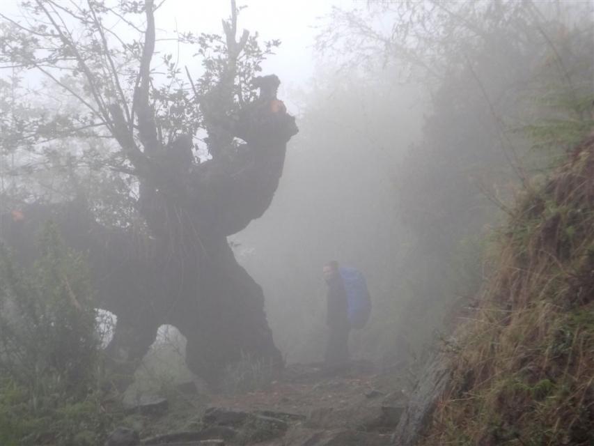 Dans la brume vers le village de Tatopani.