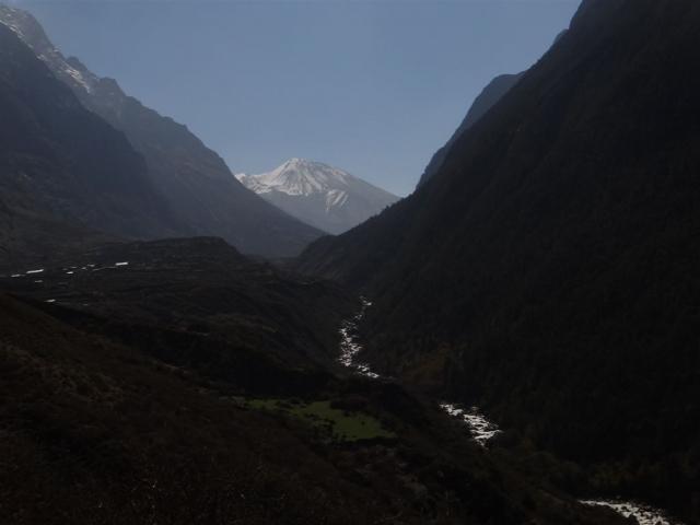La vallée du Langtang